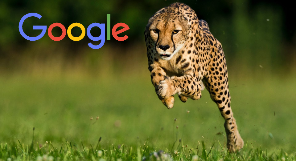 Google Accelerated Mobile Pages (AMP) Introduced to Search Results Pages