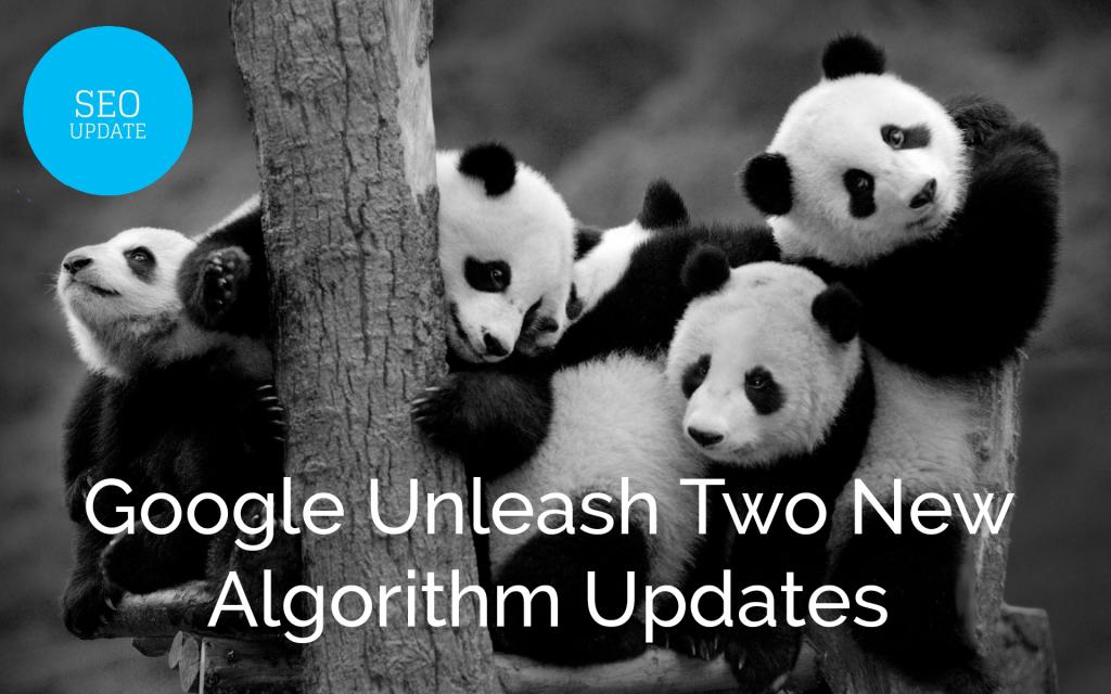 Google Unleash Two New Algorithm Updates