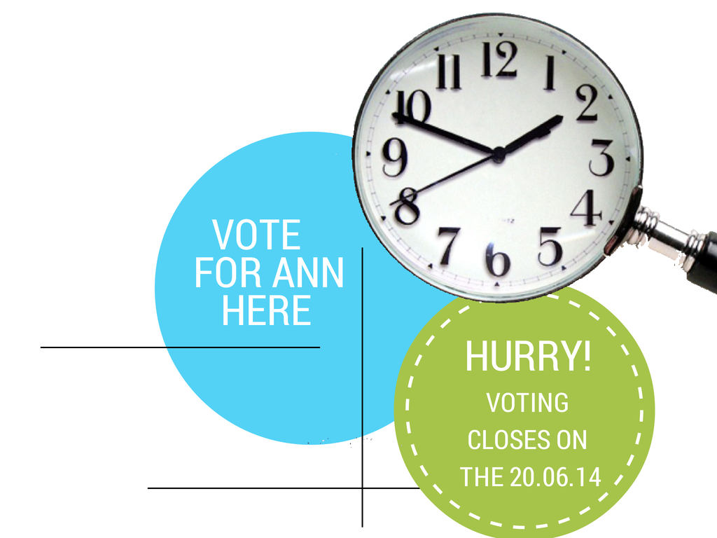 Vote for Ann Stanley; Top 100 Experts in Search