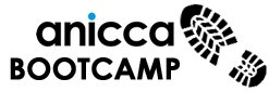 Anicca Training Bootcamps
