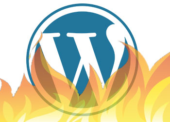 WordPress site hacked: fake spam URLs indexed – RESOLVED