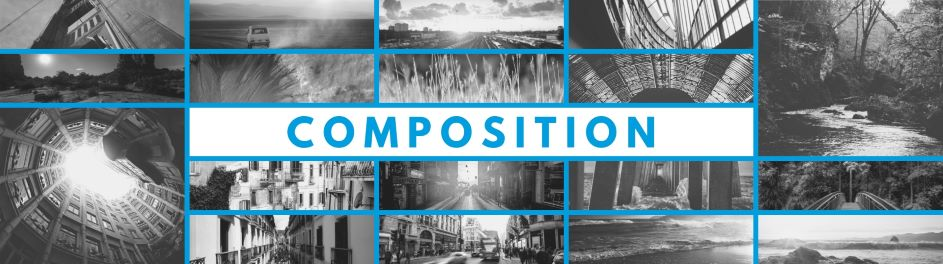 Image montage of landscapes to illustrate composition